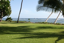 Maui'd Forever - Wedding Location Lahaina Ocean Lawn